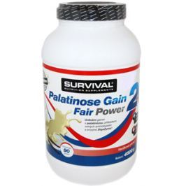 Survival Palatinose Gain 20 Fair Power 4,5 kg